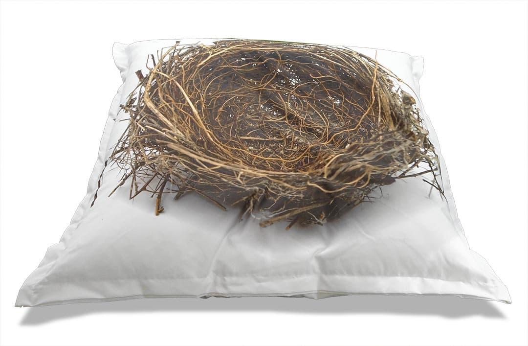 Vogelnestzitzak | Luxe zitzak